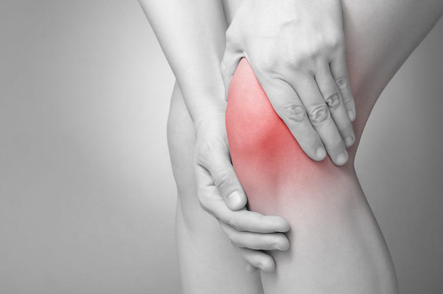 Female+Athletes+Struggle+with+Knee+Injuries