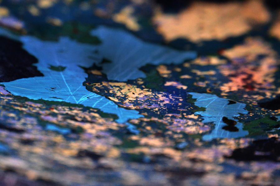 Marni+Sternberg%2C+%28Pop+of+Color%29+Photography-Gold+Key